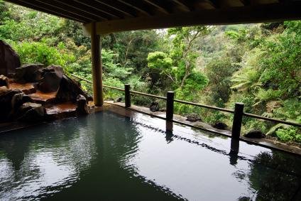 Tuekay_Japanese Koi Pond